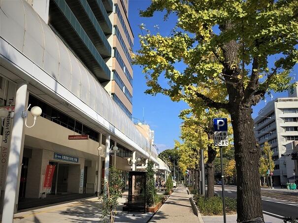 松山市駅から花園町通りを城山公園方面へ 綺麗に生まれ変わりました!